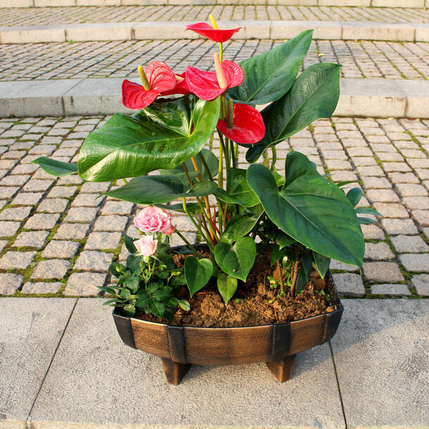 Wooden Style Half Barrel Planters (Pack of 2)