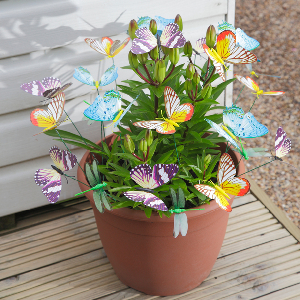 Glow in the dark Colourful Butterflies and Dragonflies (Pack of 24)